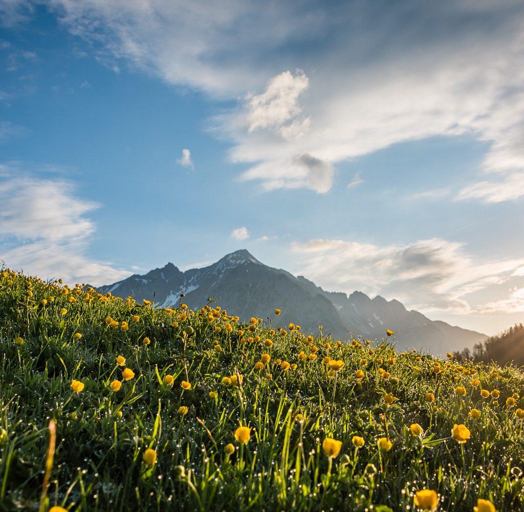 View from Walderalm in Karwendel